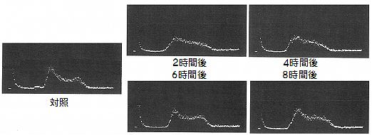 DNAヒストグラム.jpg