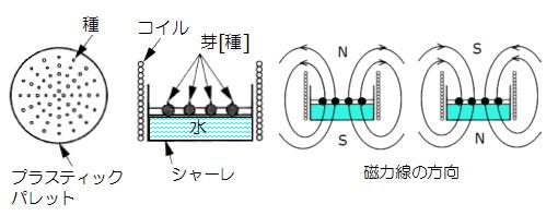 植物育成_01A.jpg